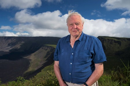 Sir David Attenborough says we have 20 years to save Earth